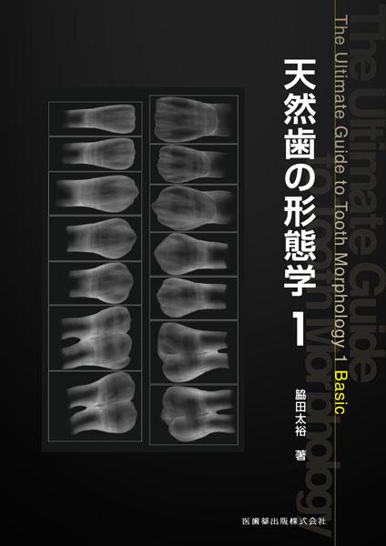 天然歯の形態学1
